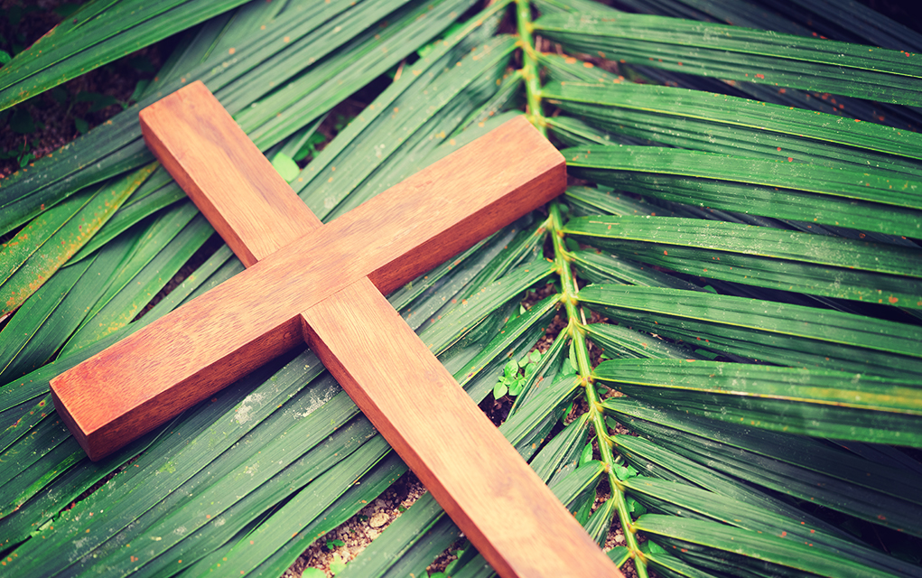 Kelly Williams on Palm Sunday and the Message of the Gospel