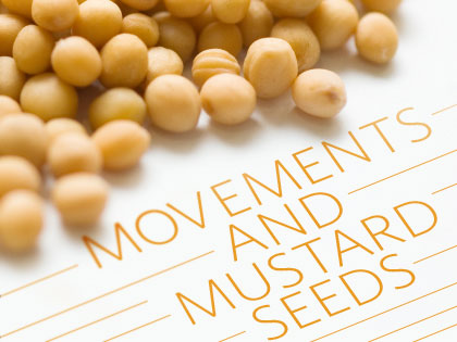 Dave Gibbons: Movements and Mustard Seeds - OutreachMagazine com